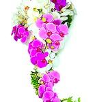Bouquet de Flores de Noiva